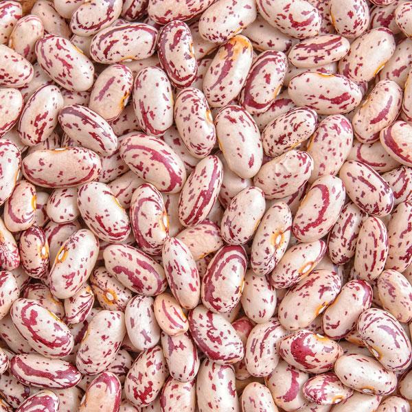 Red Speckled Beans 500g Agt Foods