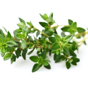 Thyme whole 1